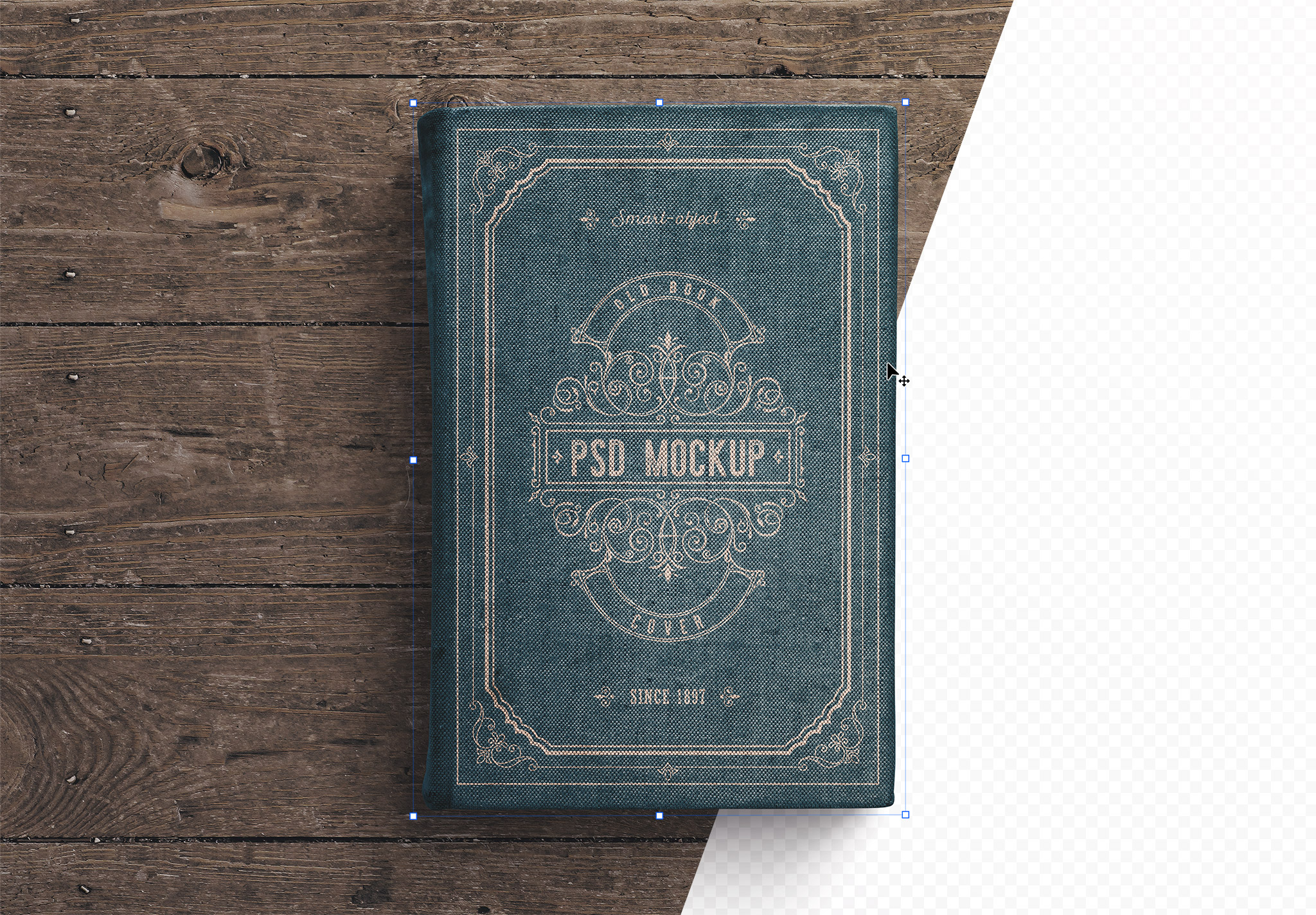 Old Book Cover Mockup thumbnail 1