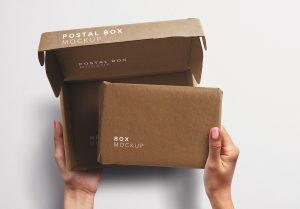 Hands Holding Opened Postal Box and Package Mockup thumbnail