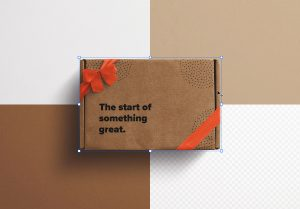 Postal Box with Bow and Ribbons Mockup image02