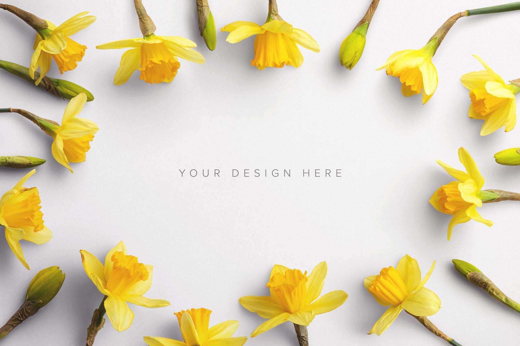 daffodils custom scene creator mockup 1