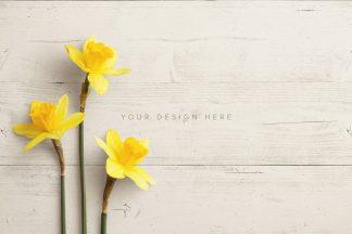 daffodils custom scene creator mockup 4