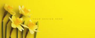 daffodils custom scene creator mockup 9