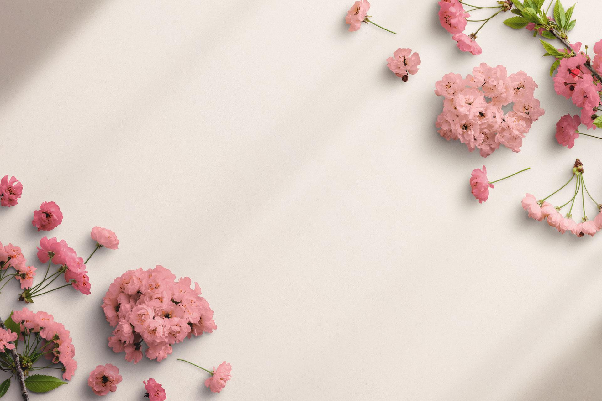 Cherry Blossom Custom Scene Creator Template 3 Thumbnail
