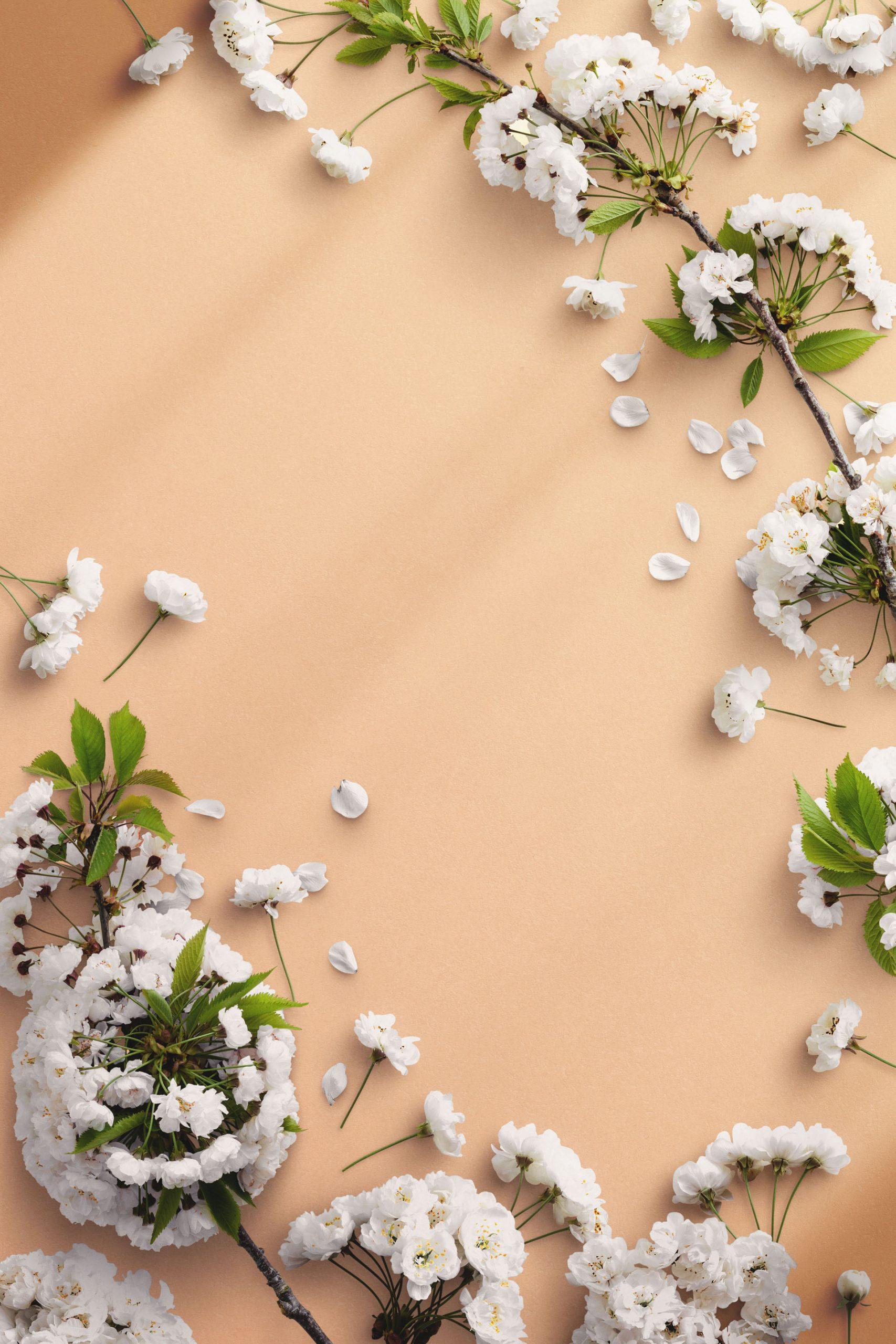 Cherry Blossom Custom Scene Creator Template 6 Thumbnail