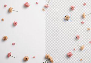 Cherry Blossoms Custom Scene Creator Template 1 Image01