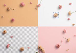 Cherry Blossoms Custom Scene Creator Template 1 Image02