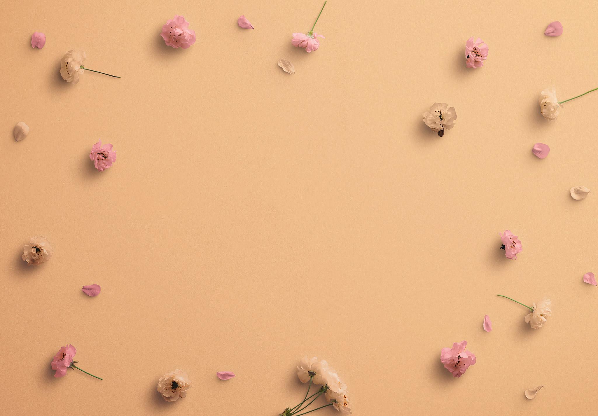 Cherry Blossoms Custom Scene Creator Template 1 Image03