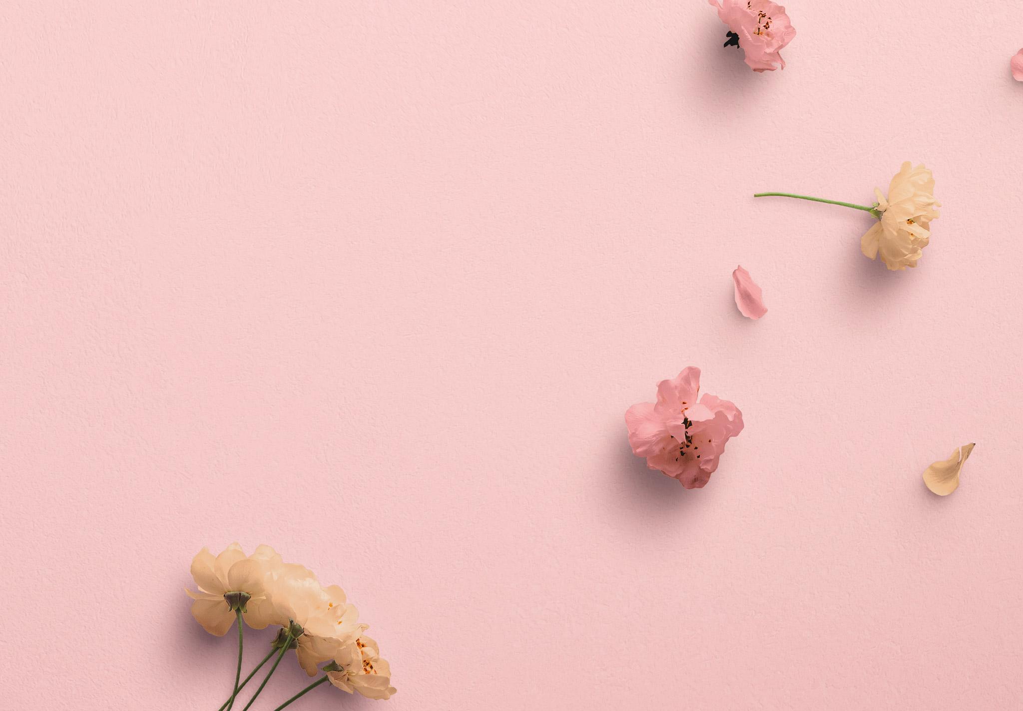 Cherry Blossoms Custom Scene Creator Template 1 Image04