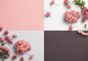 Cherry Blossoms Custom Scene Creator Template 3 Image02