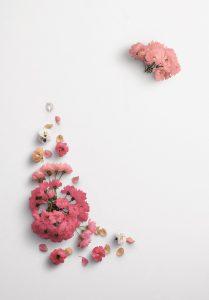 Cherry Blossoms Custom Scene Creator Template 4 Thumbnail