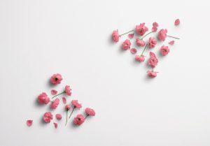 Cherry Blossoms Custom Scene Creator Template 5 Thumbnail