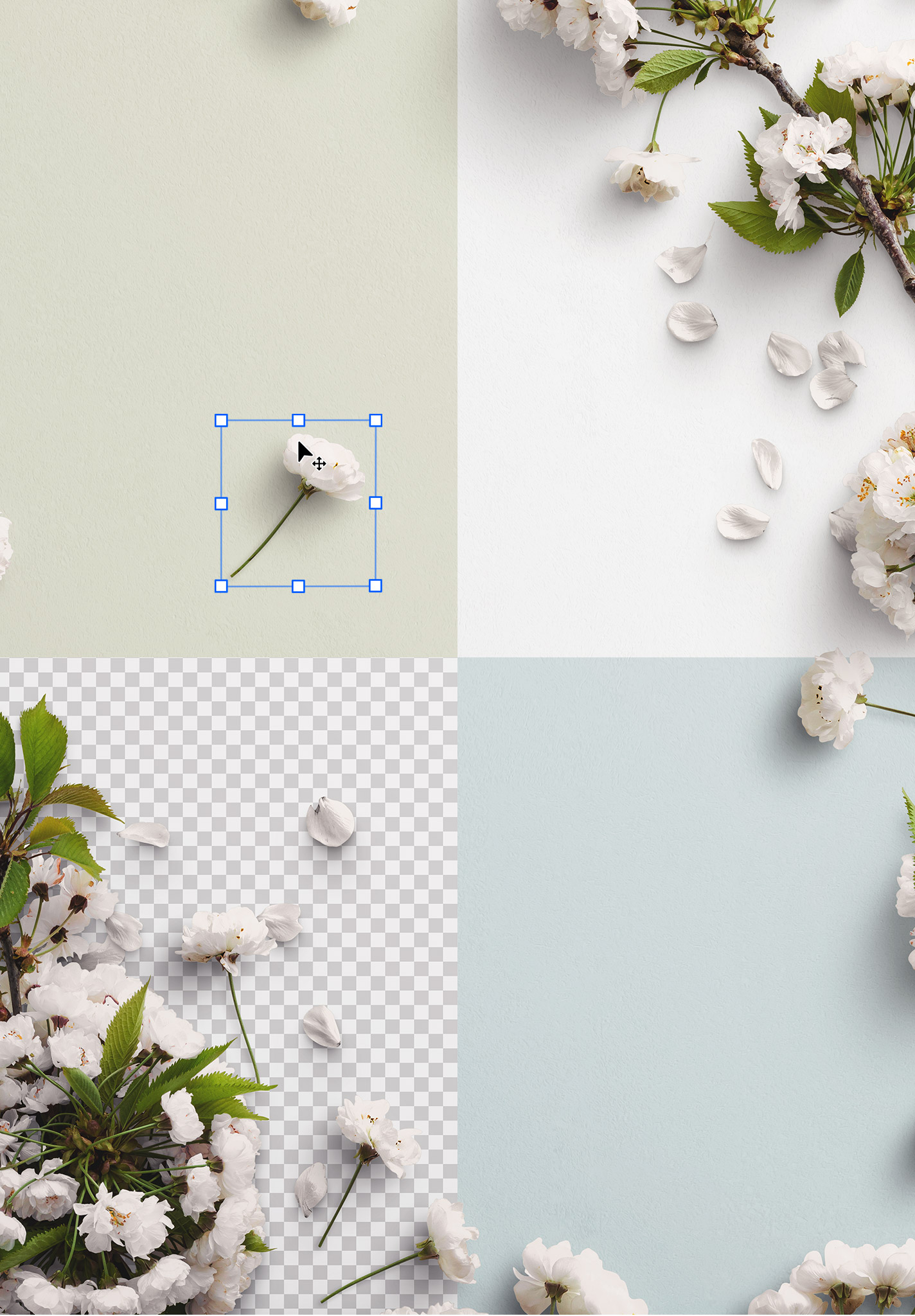 Cherry Blossoms Custom Scene Creator Template 6 Image02