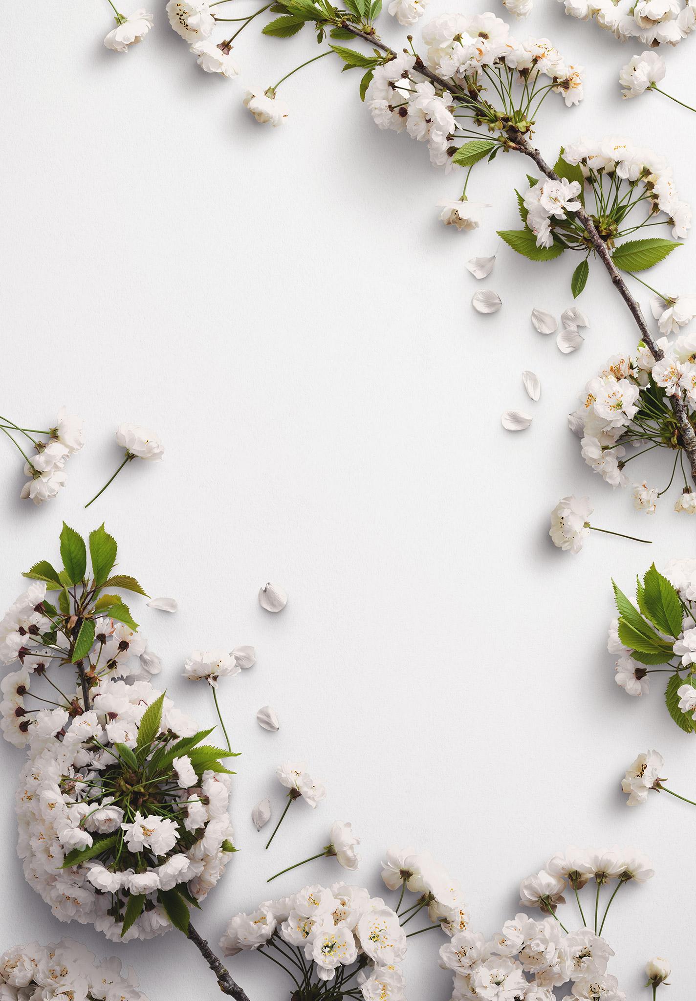 Cherry Blossoms Custom Scene Creator Template 6 Thumbnail