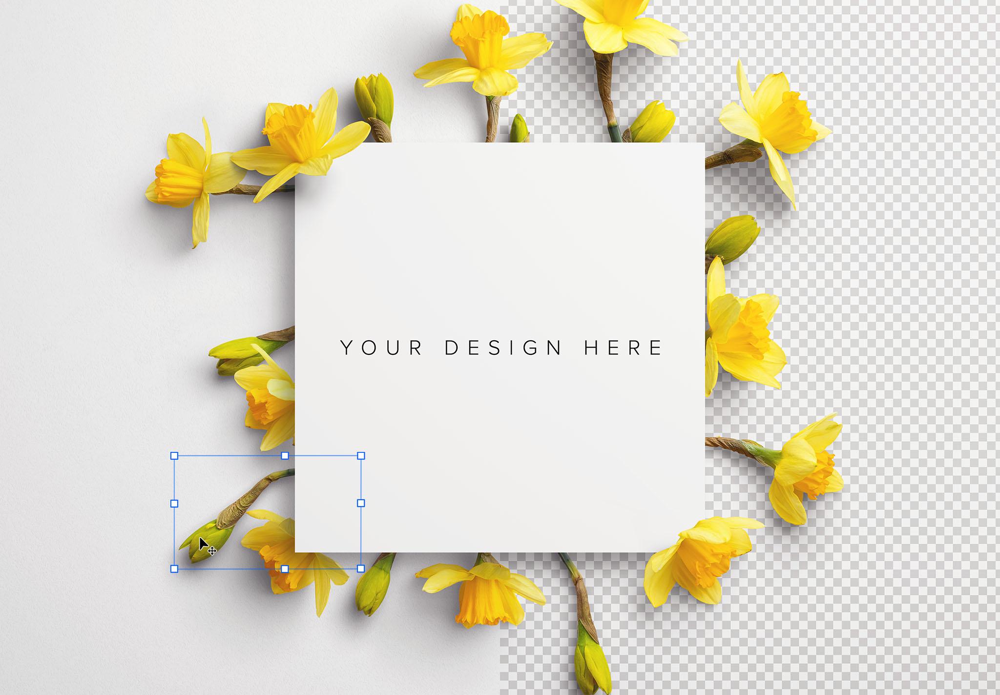 Daffodils Custom Scene Creator Template 10 Image01