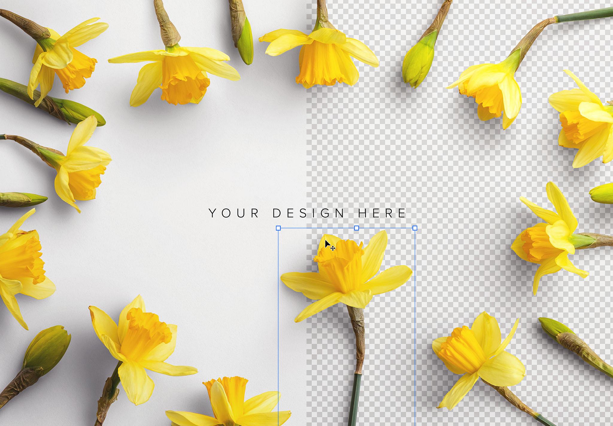 Daffodils Custom Scene Creator Template 1 Image01