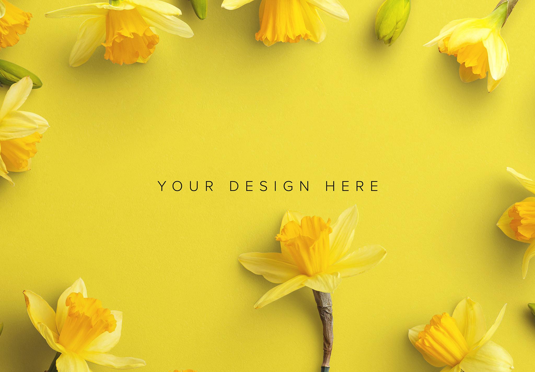 Daffodils Custom Scene Creator Template 1 Image03
