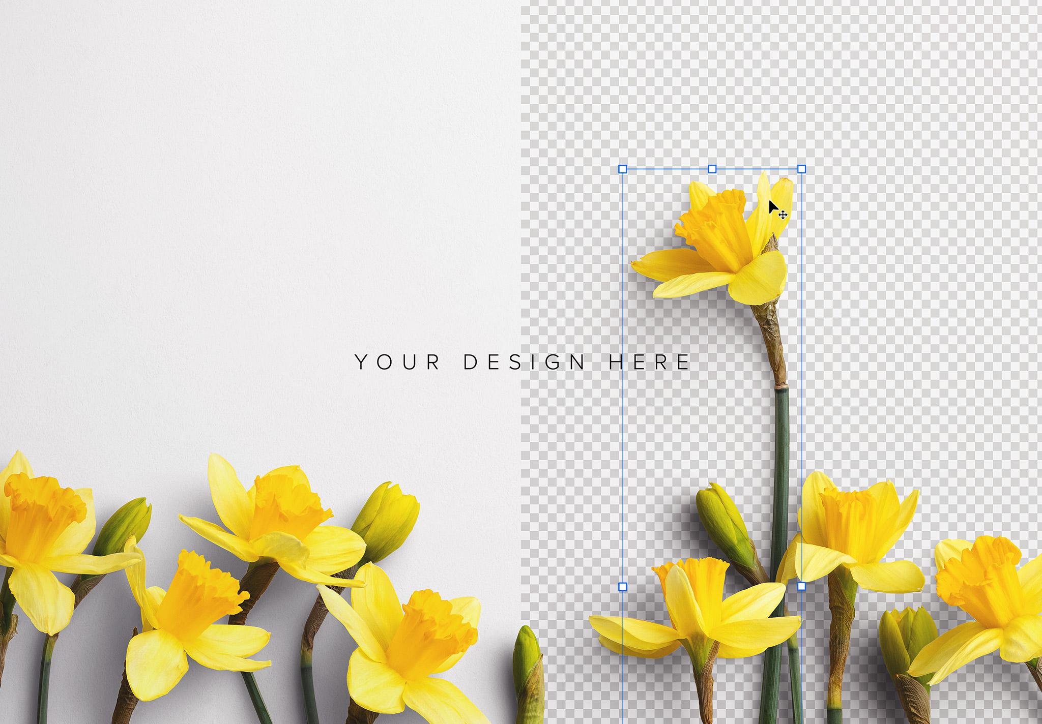 Daffodils Custom Scene Creator Template 2 Image01