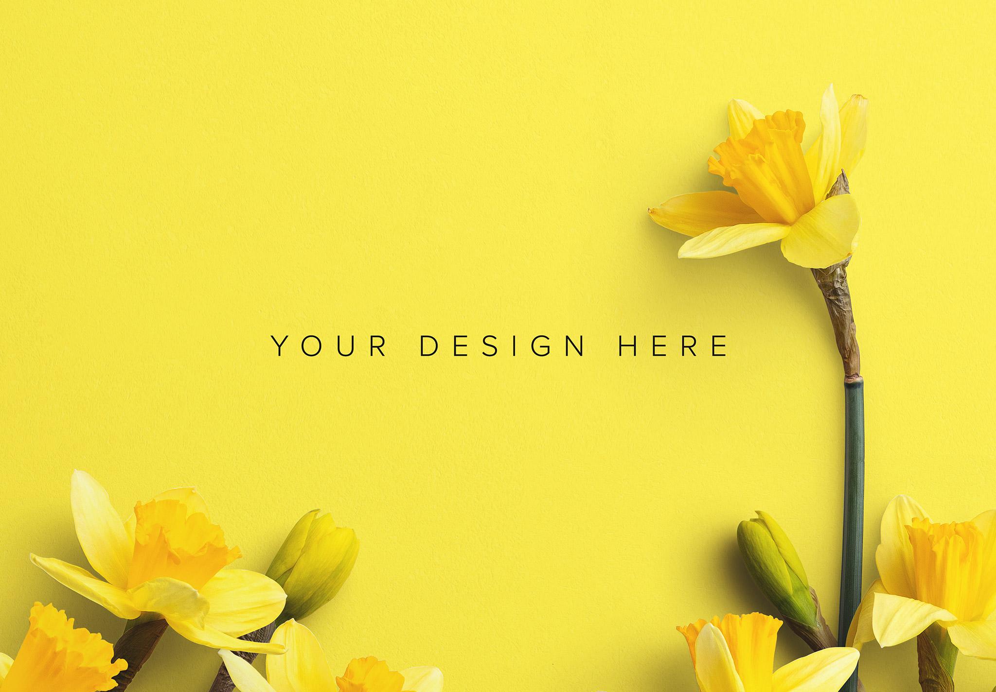 Daffodils Custom Scene Creator Template 2 Image03