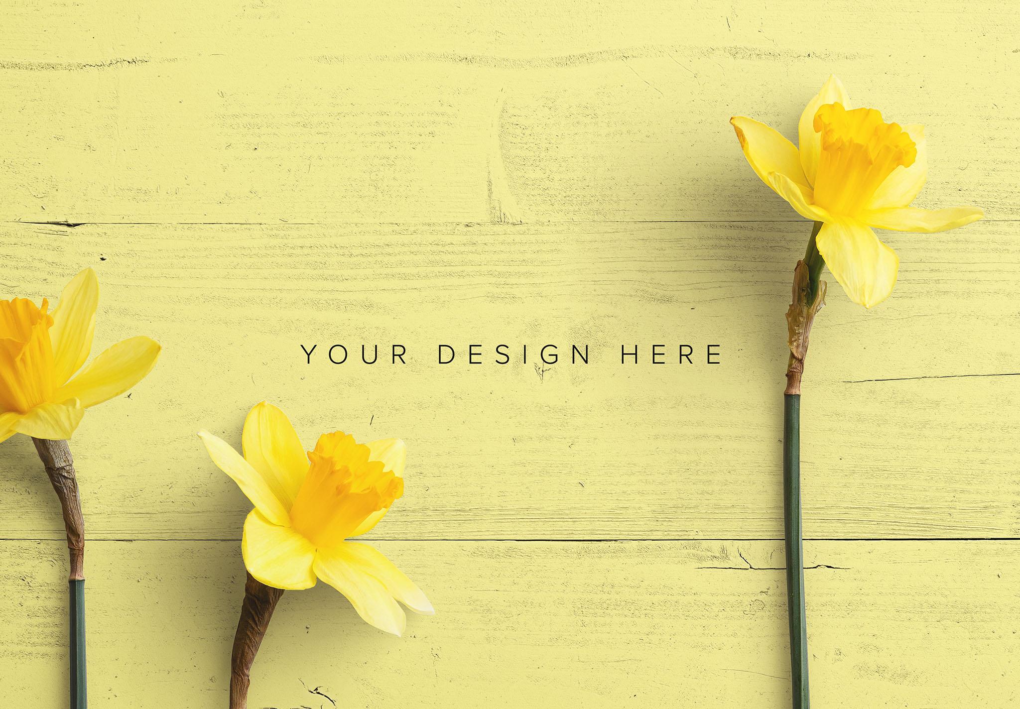 Daffodils Custom Scene Creator Template 4 Image03