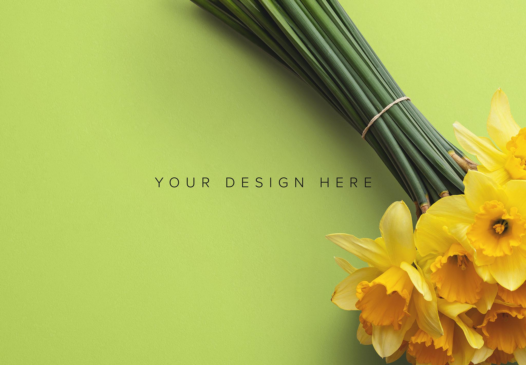 Daffodils Custom Scene Creator Template 5 Image03