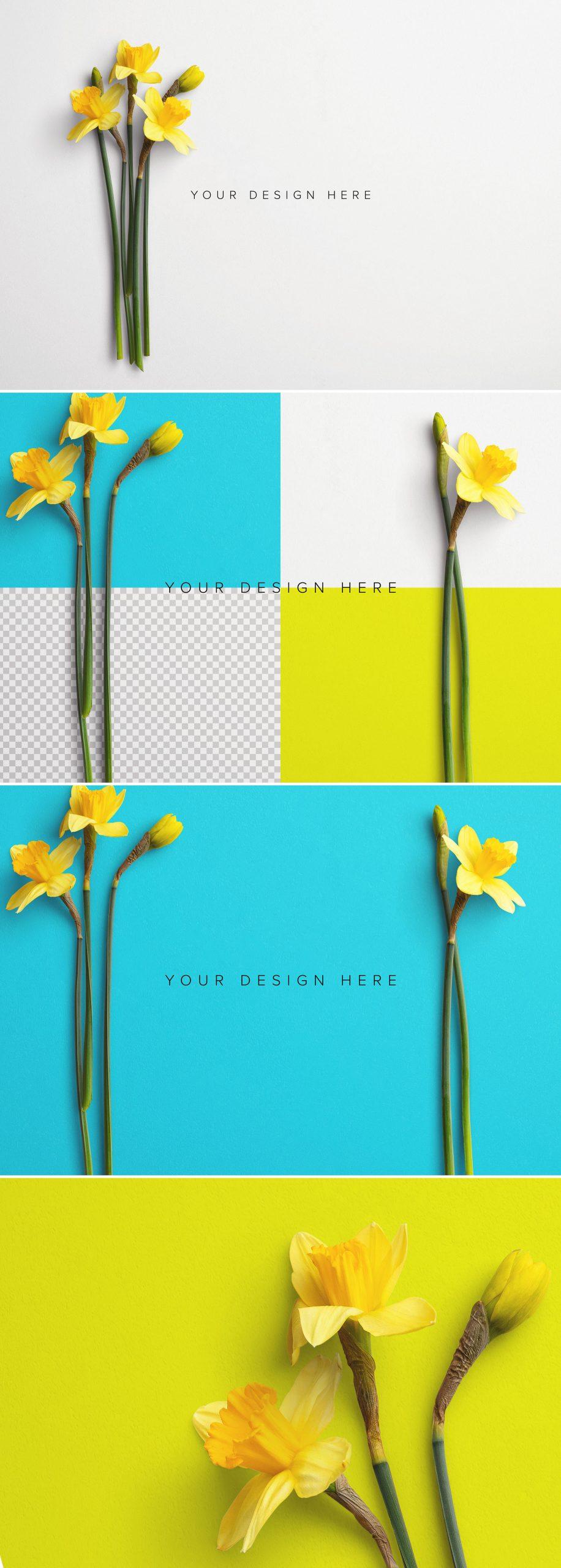 Daffodils Custom Scene Creator Template 7Preview1