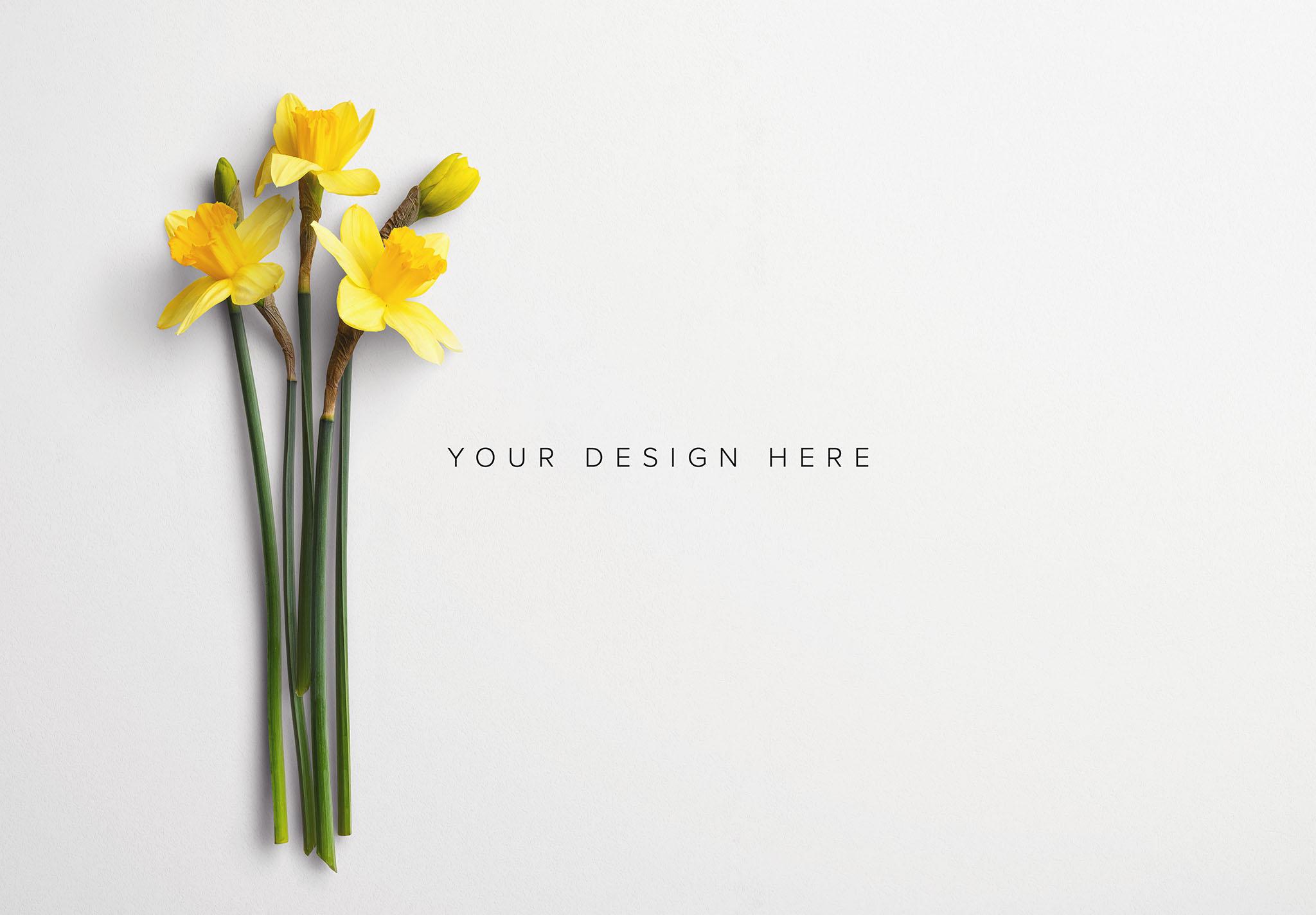 Daffodils Custom Scene Creator Template 7 Thumbnail