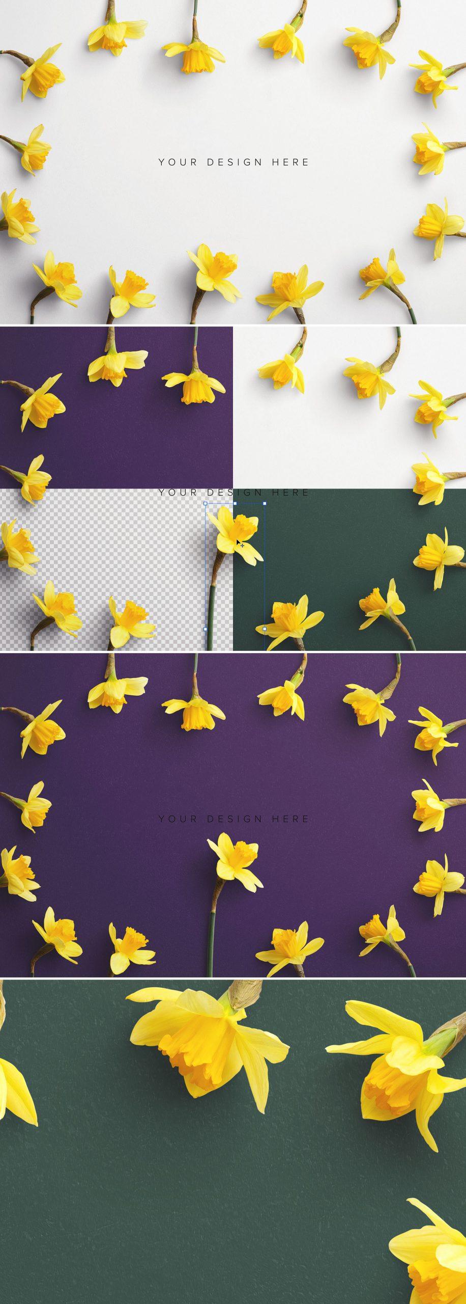 Daffodils Custom Scene Creator Template 8Preview1