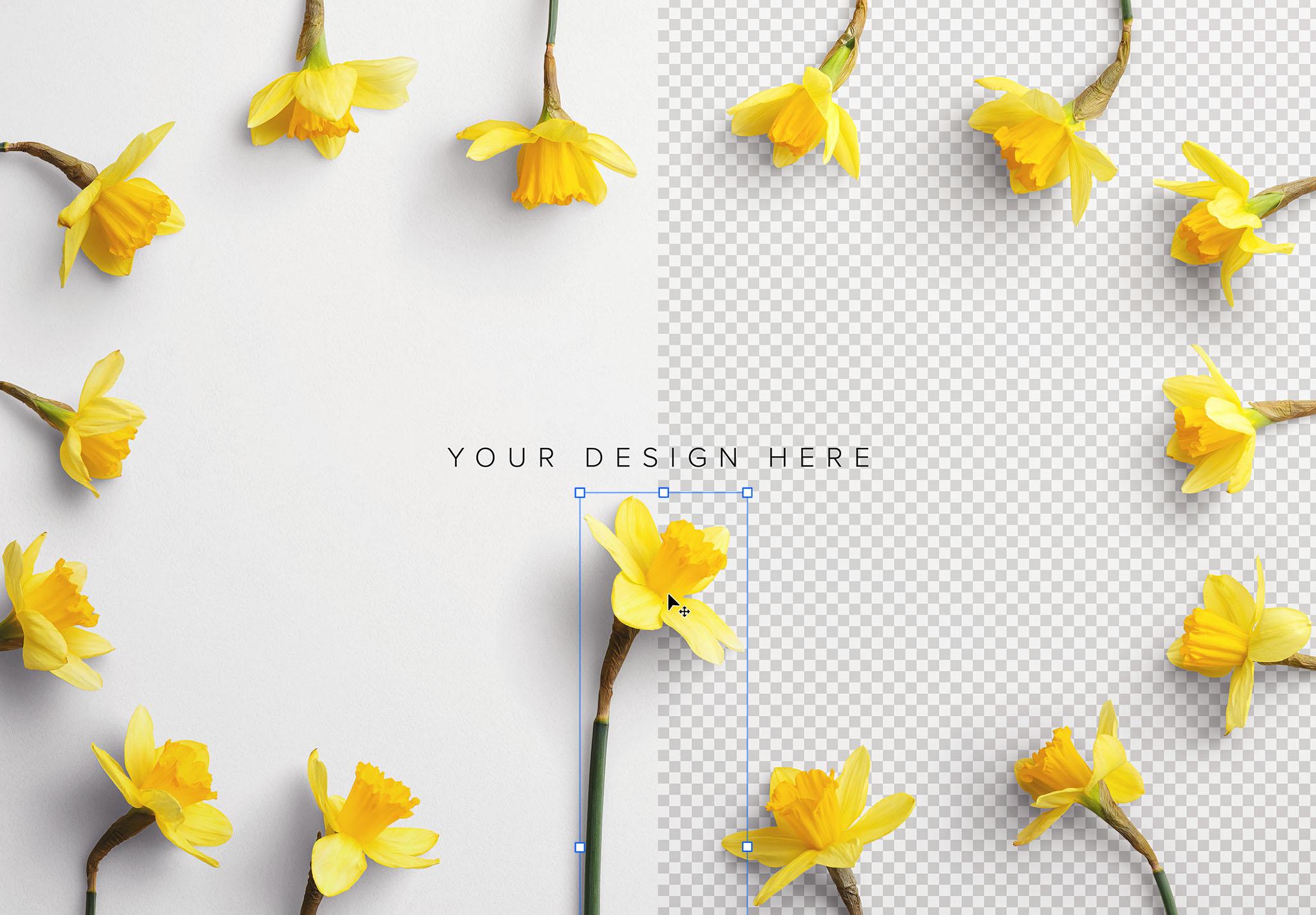Daffodils Custom Scene Creator Template 8 Image01