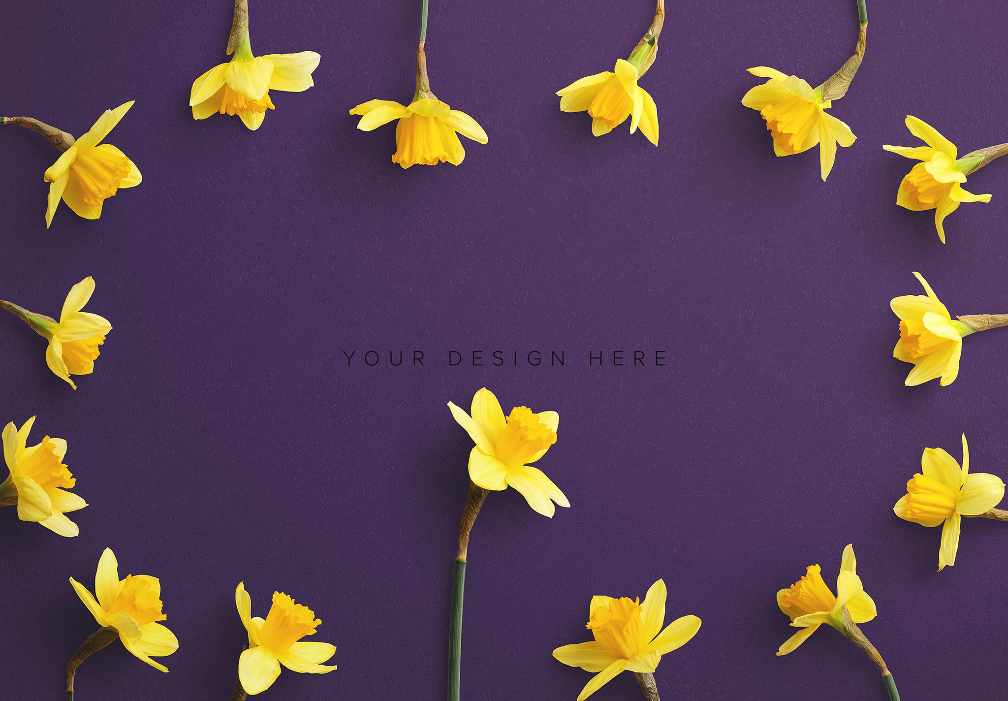 Daffodils Custom Scene Creator Template 8 Image03