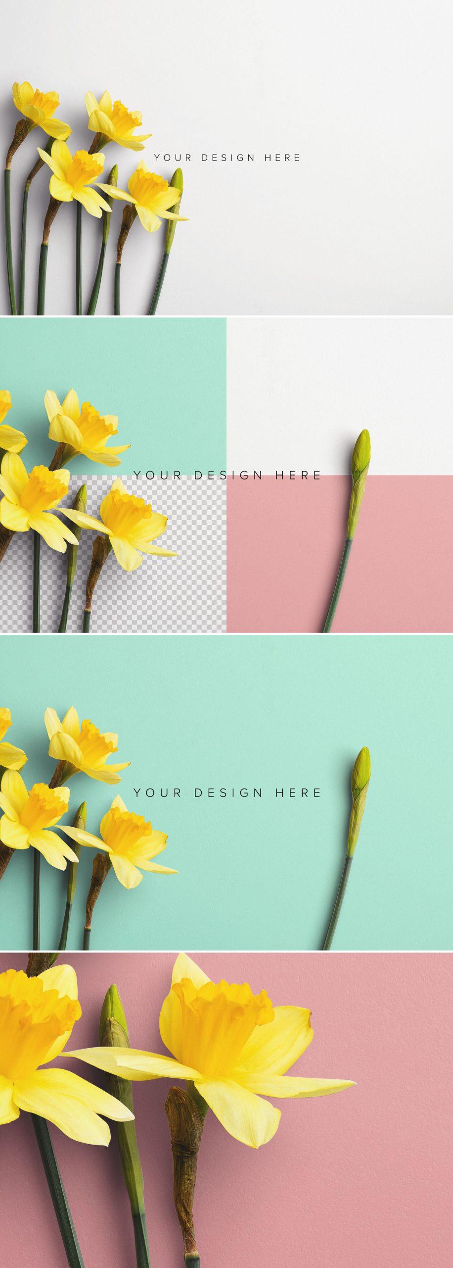 Daffodils Custom Scene Creator Template 9Preview1