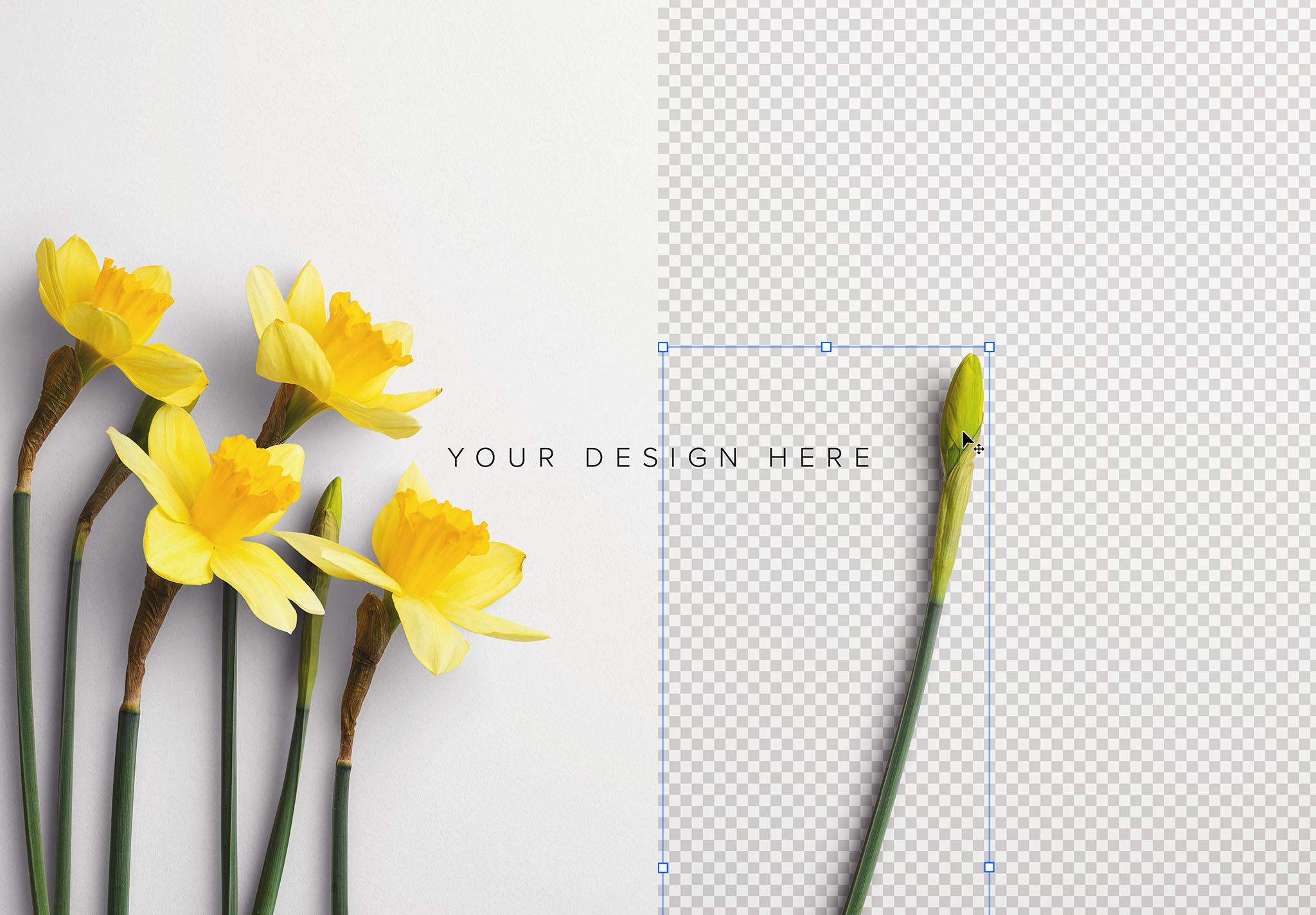 Daffodils Custom Scene Creator Template 9 Image01