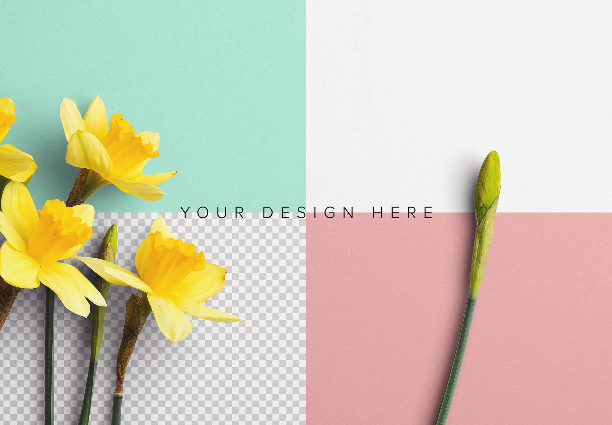 Daffodils Custom Scene Creator Template 9 Image02