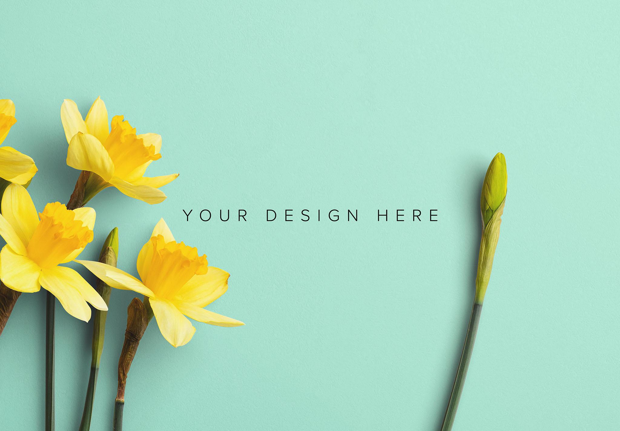 Daffodils Custom Scene Creator Template 9 Image03