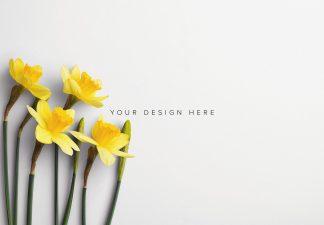 Daffodils Custom Scene Creator Template 9 Thumbnail