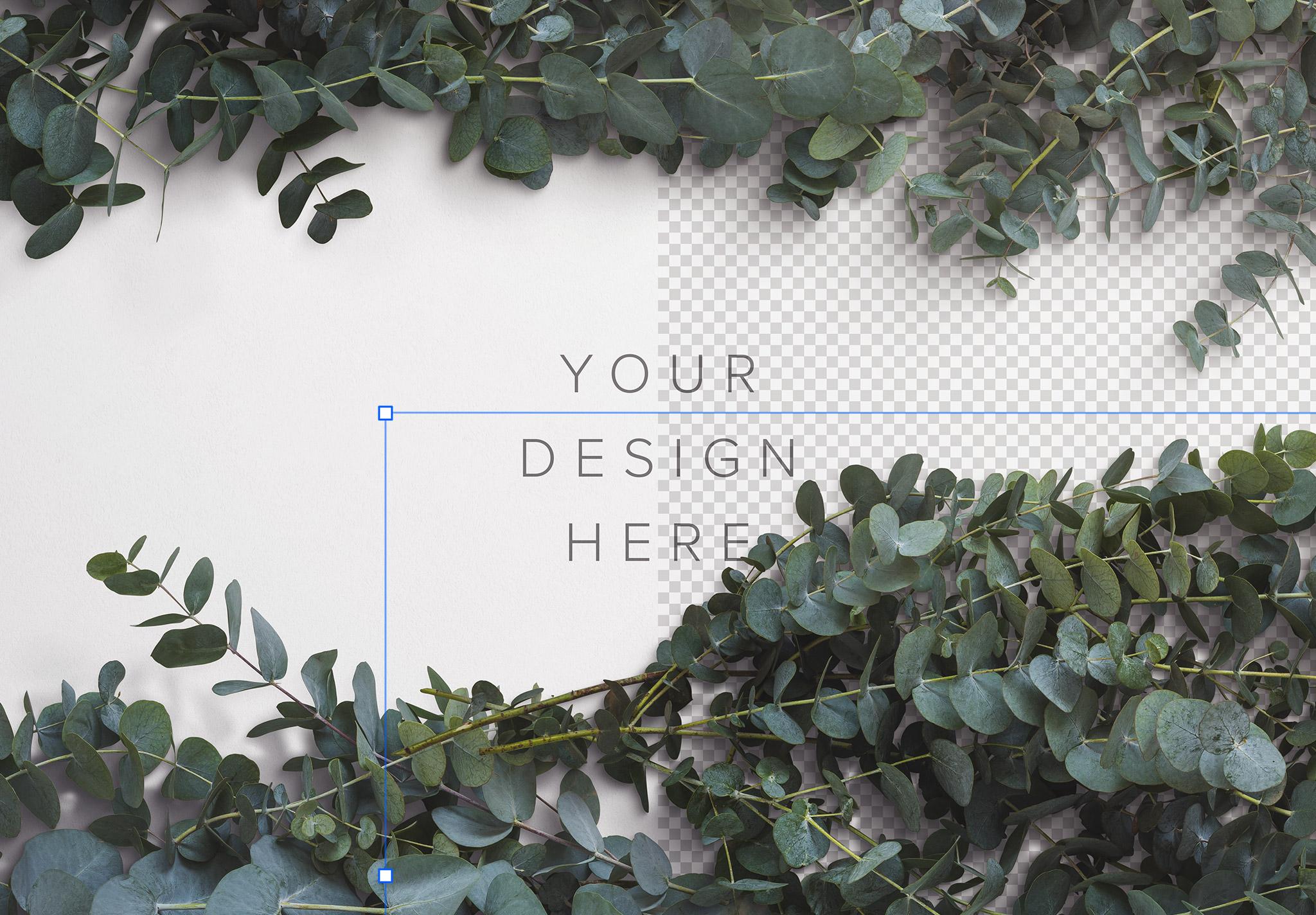 Eucalyptus Custom Scene Creator Template 1 Image01