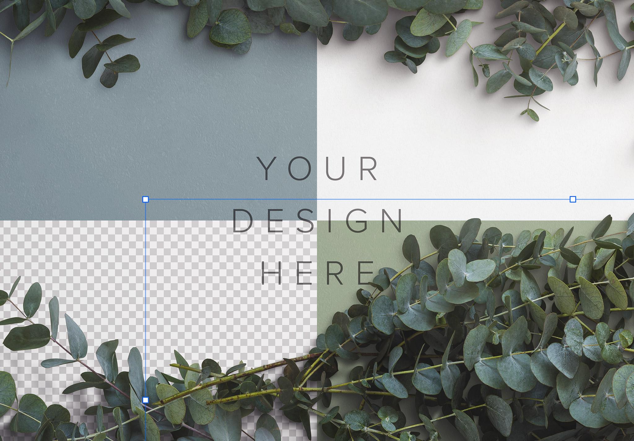 Eucalyptus Custom Scene Creator Template 1 Image02