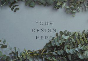 Eucalyptus Custom Scene Creator Template 1 Image03