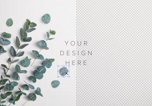 Eucalyptus Custom Scene Creator Template 2 Image01