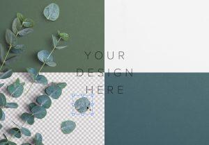 Eucalyptus Custom Scene Creator Template 2 Image02