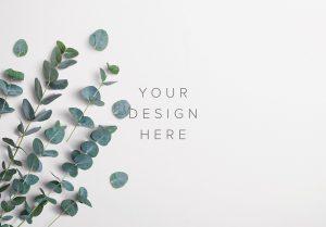 Eucalyptus Custom Scene Creator Template 2 Thumbnail
