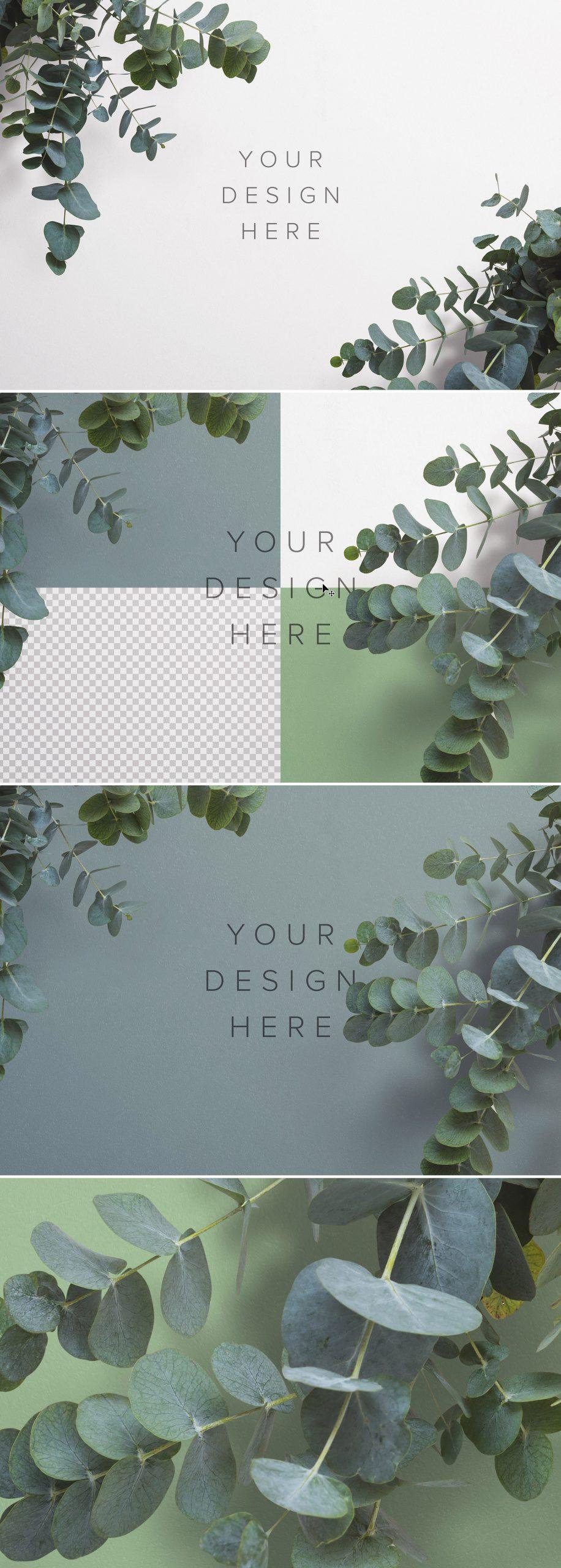 Eucalyptus Custom Scene Creator Template 3Preview1