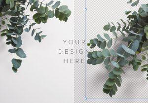 Eucalyptus Custom Scene Creator Template 3 Image01