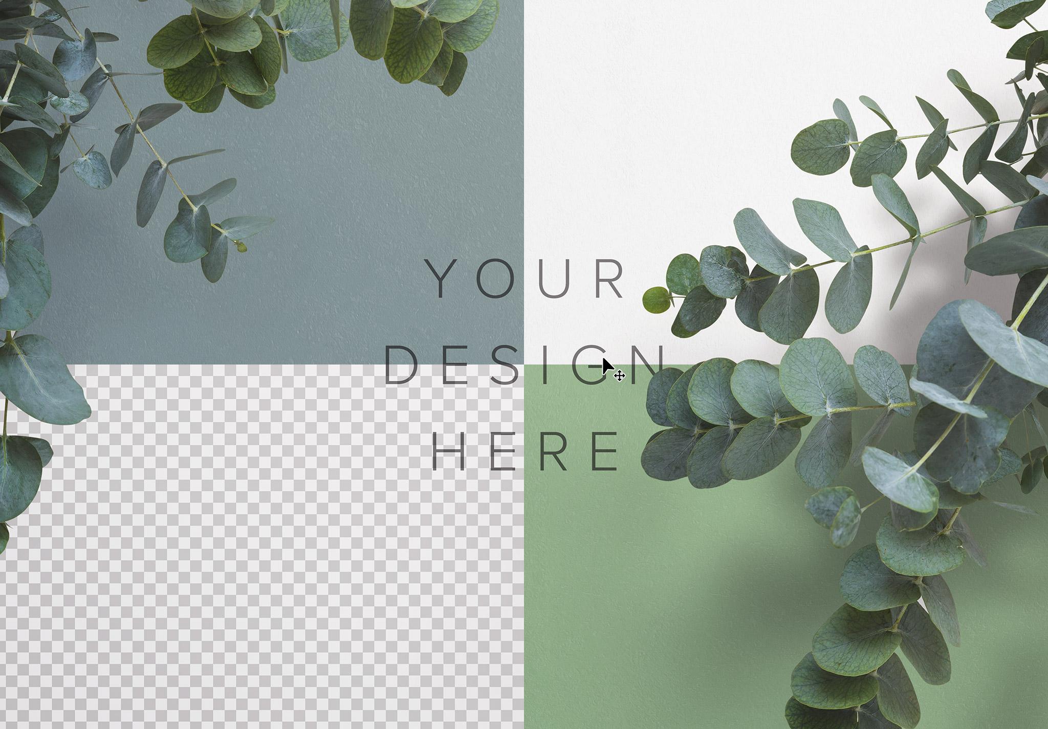 Eucalyptus Custom Scene Creator Template 3 Image02