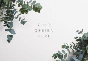 Eucalyptus Custom Scene Creator Template 3 Thumbnail