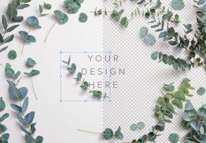 Eucalyptus Custom Scene Creator Template 4 Image01