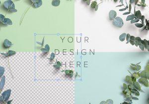 Eucalyptus Custom Scene Creator Template 4 Image02