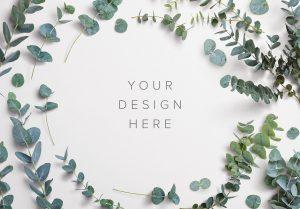 Eucalyptus Custom Scene Creator Template 4 Thumbnail