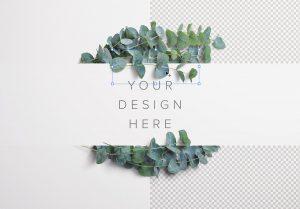 Eucalyptus Custom Scene Creator Template 6 Image01