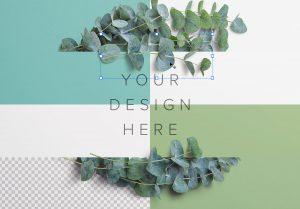 Eucalyptus Custom Scene Creator Template 6 Image02
