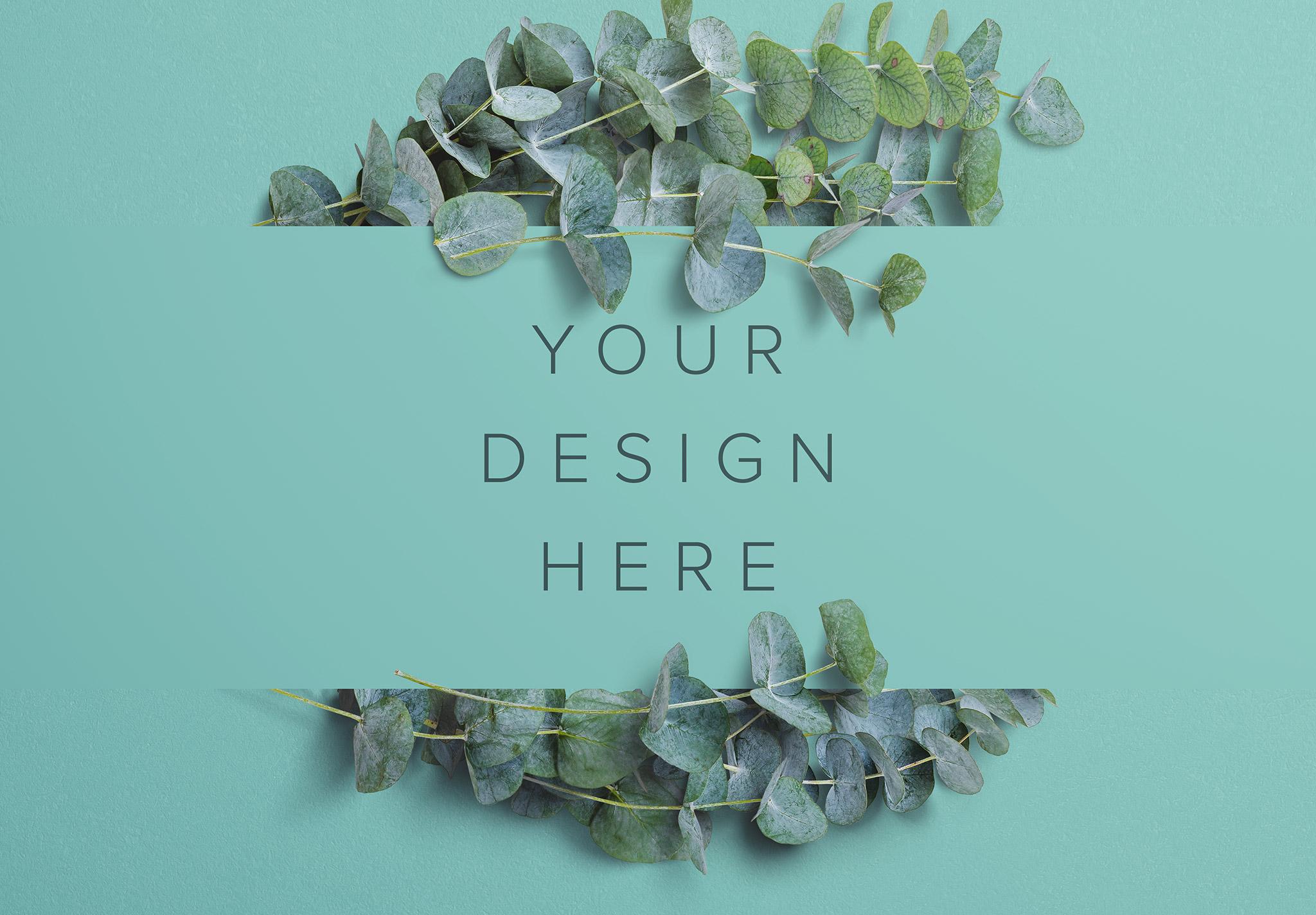 Eucalyptus Custom Scene Creator Template 6 Image03